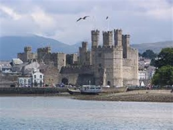 Welsh Tinsel & Turkey in Caernarfon