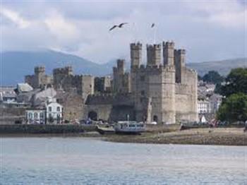 Welsh Tinsel & Turkey in Caernarfon