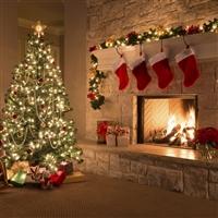 All Christmas Tours